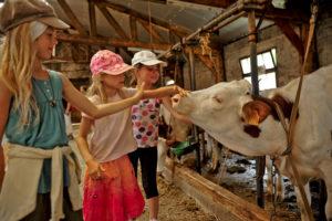Visites pédagogiques de fermes au pays des sucs
